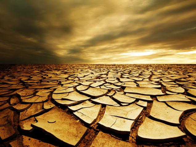 Dry Cracked Desert